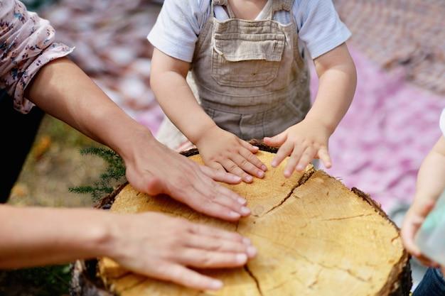 Família brincando com uma árvore