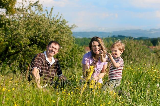 Família brincando no prado