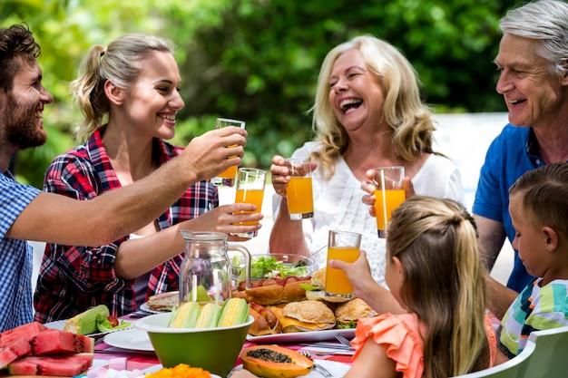 Família brindando bebidas enquanto almoça no gramado