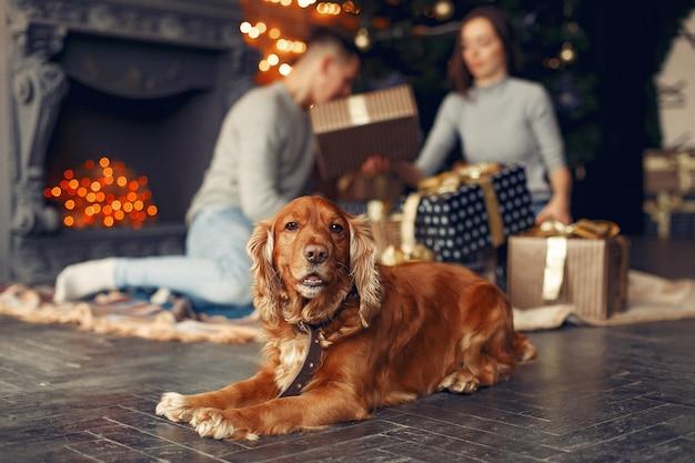 Família com cachorro fofo em casa perto da árvore de natal