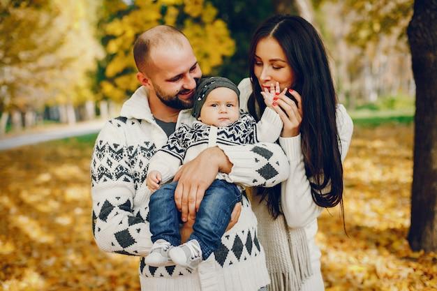 Família, com, filho, em, um, outono, parque