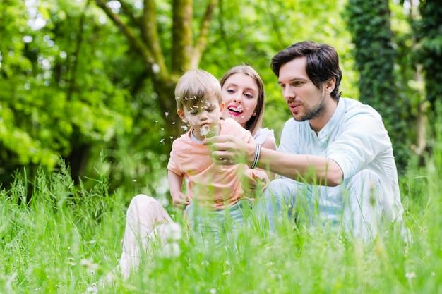 Família com filho na campina soprando flor dente de leão