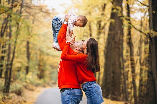 Família, com, um, filho pequeno, em, outono, parque