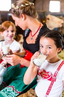 Família da baviera, bebendo leite no celeiro de vaca
