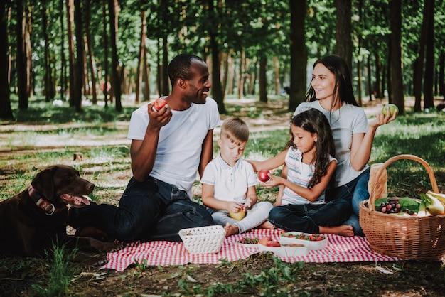 Família de raça mista vegetariana tem piquenique no parque.