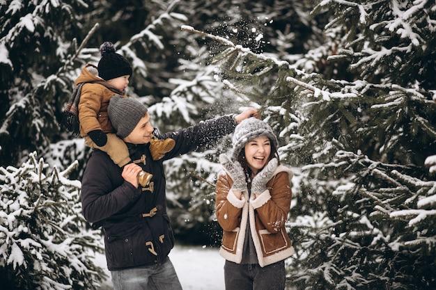 Família em uma floresta de inverno