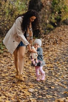 Família feliz, com, pequeno, bebê, passeio, em, parque, estrada, com, amarela, árvores, em, outono