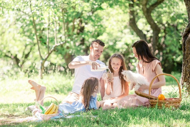 Família feliz em um piquenique no parque em um dia ensolarado