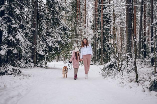 Família feliz, jovem mãe e uma linda garotinha com outwear quente rosa andando se divertindo com o cachorro shiba inu vermelho na floresta de inverno frio branco nevado ao ar livre