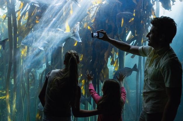 Família feliz olhando o tanque de peixes