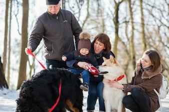 Família feliz, poses, com, engraçado, Akita-inu, e, bernese, montanha, cão, ligado, a, neve