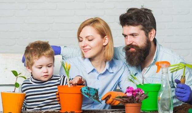 Família jardinagem juntos, filho ajuda pai e mãe a plantar flores, filho ajuda os pais a cuidar das plantas.