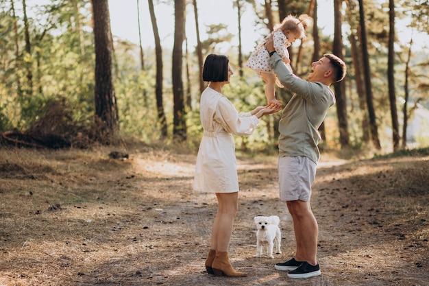 Família jovem com filha pequena caminhando na floresta ao pôr do sol