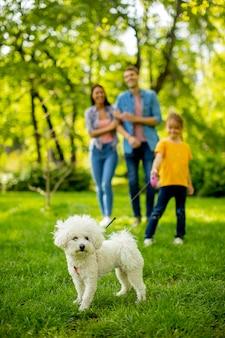 Família jovem e feliz com um lindo cachorro bichon no parque