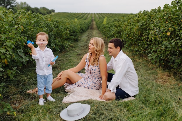 Família jovem feliz pai, mãe e filho parece feliz no parque