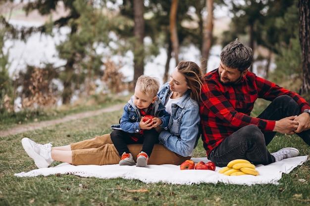 Família jovem no parque, tendo piscnic