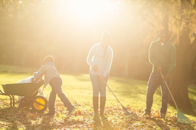 Família jovem pegando folhas