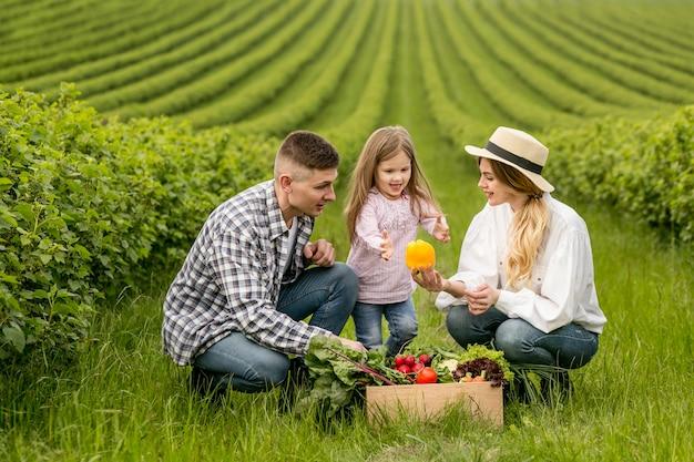Família na terra com cesta de legumes