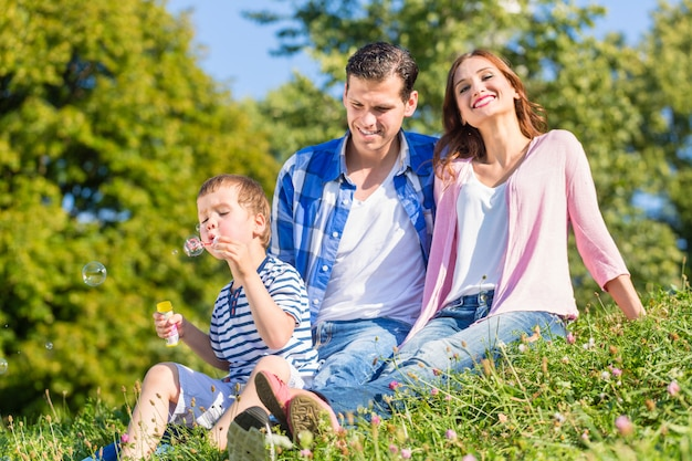 Família, sentando, ligado, prado, tocando, com, bolhas sabão