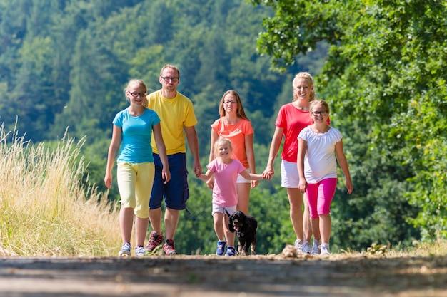 Família, tendo, passeio, caminho, madeiras