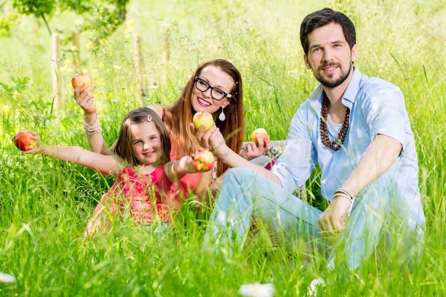 Família, tendo piquenique, ligado, prado, com, fruta saudável