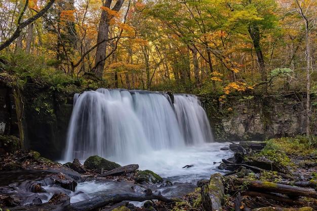 Famosa cachoeira choshi otaki na prefeitura de aomori, no japão