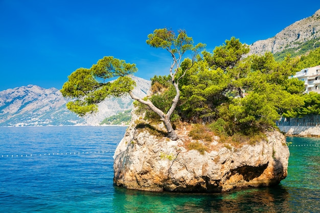 Famosa rocha de brela perto da praia de punta rata, makarska riviera, croácia