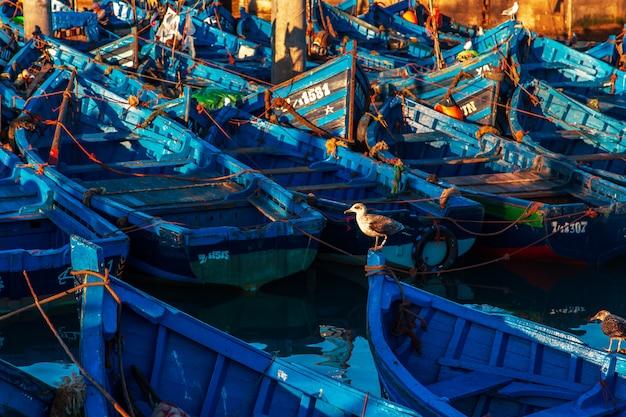 Famosos barcos azuis no porto de essaouira.