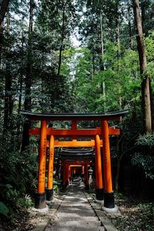 Famosos portões torii no santuário fushimi inari, kyoto, japão