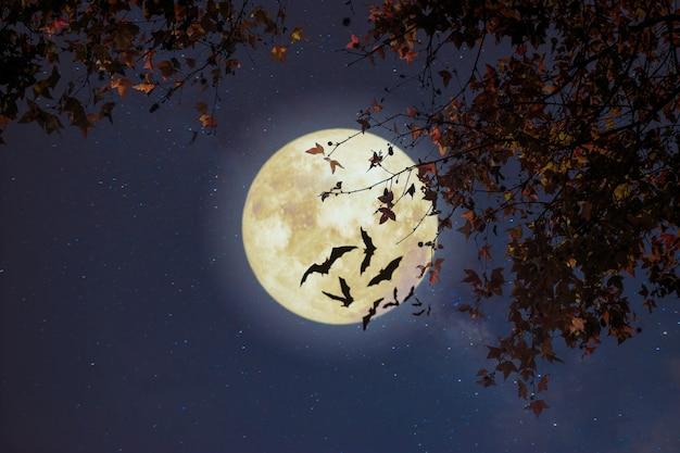 Fantasia bonita do outono, árvore de bordo no outono e lua cheia com estrela. estilo retrô com tom de cor vintage. dia das bruxas e ação de graças no fundo do céu noturno.