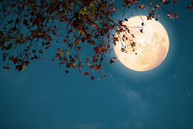 Fantasia bonita do outono, árvore de bordo no outono e lua cheia com estrela. estilo retrô com tom de cor vintage.
