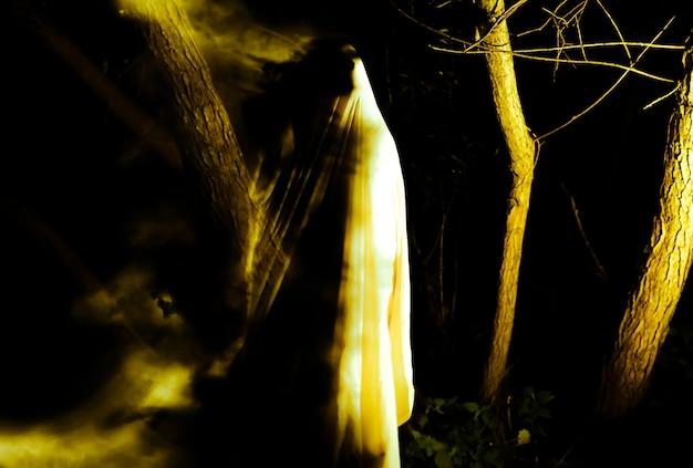 Fantasma à noite ao ar livre. idéia de fantasia de halloween. conceito de filme de terror. coisas assustadoras na floresta. festas de outono de todas as vésperas de santos.