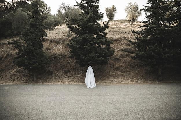 Fantasma sombrio em pé na estrada rural