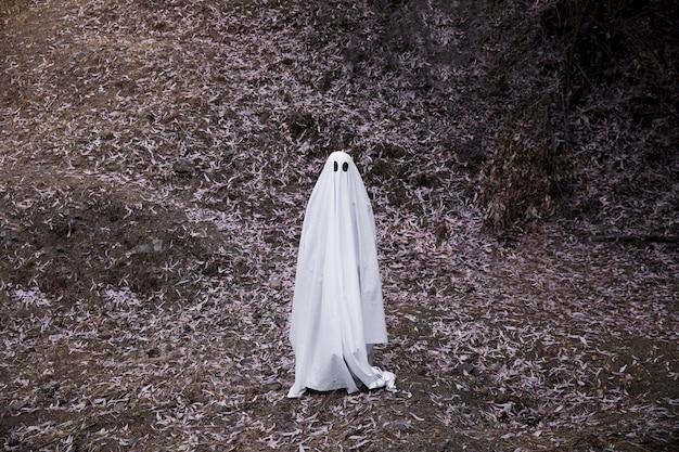 Fantasma sombrio em pé no chão na floresta