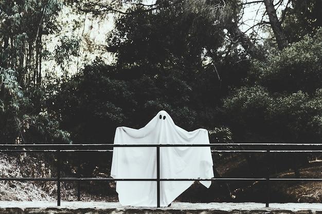 Fantasma sombrio em pé no viaduto com mãos espalhando na floresta