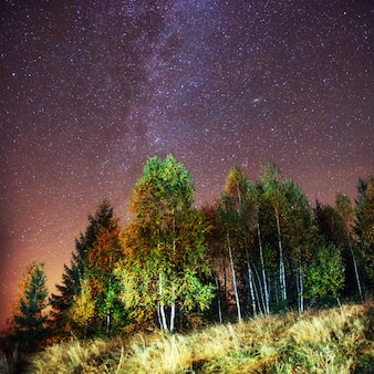 Fantástica chuva de meteoros de inverno e as montanhas cobertas de neve.