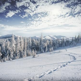 Fantástica paisagem de inverno, degraus, algo que leva ao mo