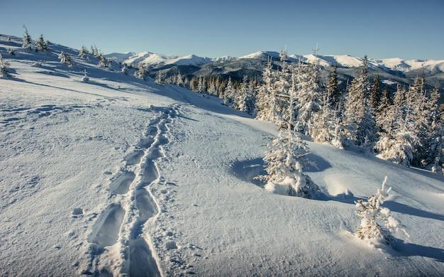 Fantástica paisagem de inverno e trilhas pisadas que levam