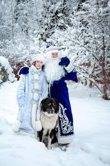 Father frost, snow maiden e um grande cachorro em um fundo de árvores nevadas