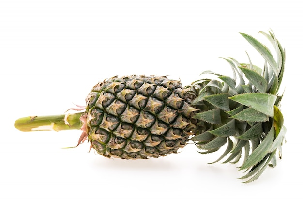 Fatia abacaxi saúde verde amarelo