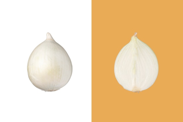 Fatia de cebola branca fresca crua minimalista isolada cor da moda de fundo