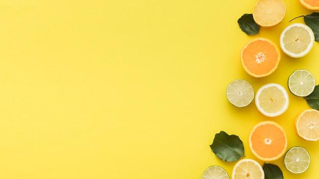 Fatias cítricas de laranjas e limões