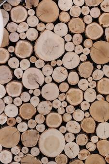Fatias de árvores, para plano de fundo ou textura.