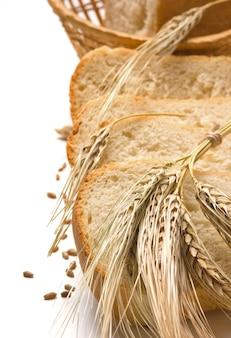 Fatias de pão e espigas de milho isolado no branco