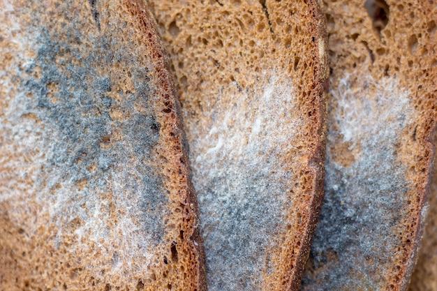 Fatias de pão preto, coberto de mofo, close-up. mofo no pão