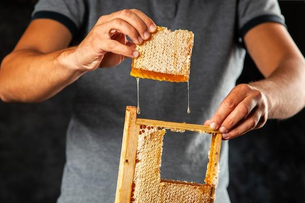 Favo de mel em uma moldura de madeira