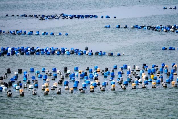 Fazenda de ostras é feita de balde de plástico com a corda sob o mar