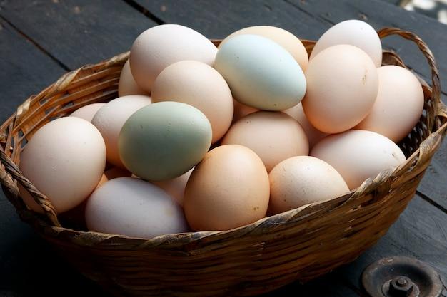 Fazenda de ovos frescos