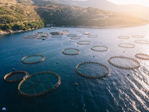Fazenda de peixes na baía do mar