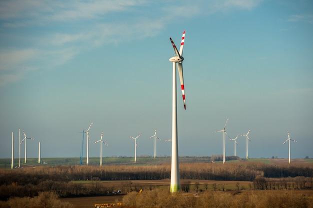 Fazenda de turbinas eólicas em campo verde.